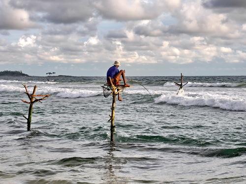 Рыбалка в Хиккадуве